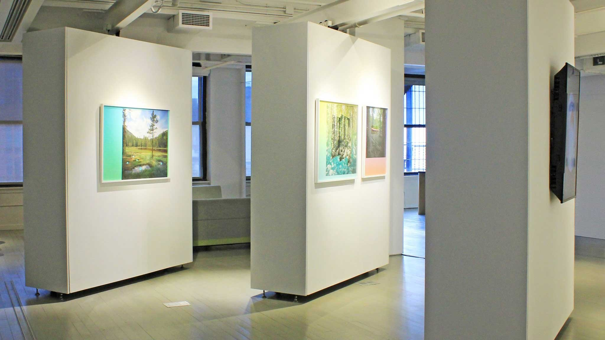 "Installation shot of ""Irreality"" curated by MACP Fellow Valerie Amend in CP Projects Space."